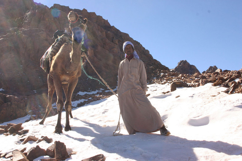 A Sinai Bedouin man in St.Katherine and his camel