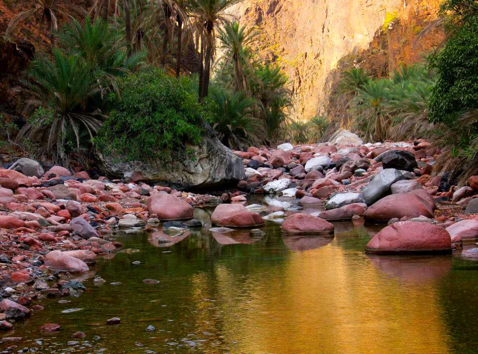 wadi dirhur in socotra
