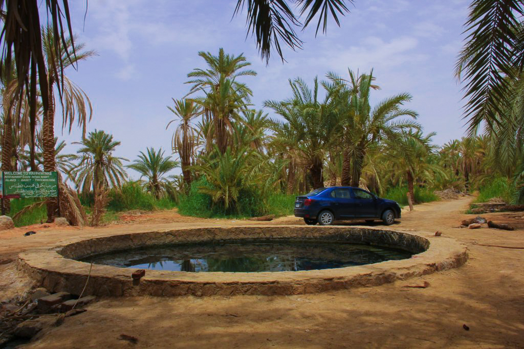 One of the numerous hot springs of Siwa