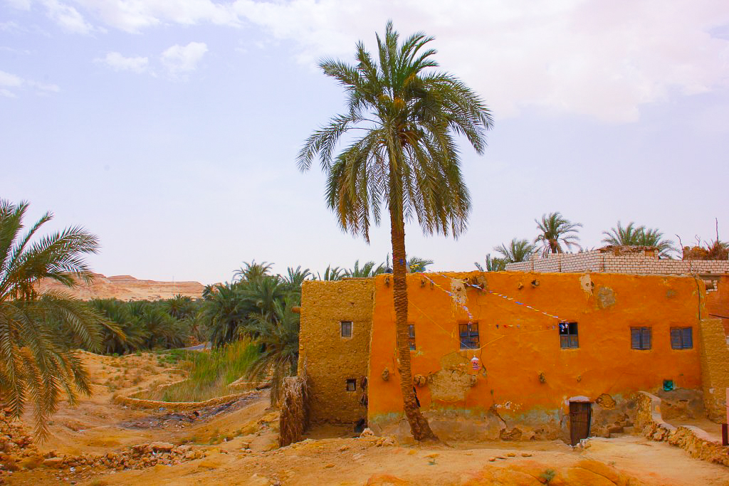 Once you have visited Siwa oasis,