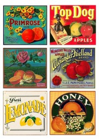 Vintage fruit crate labels