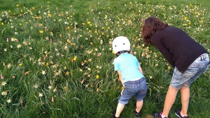 Cuentos sobre la primavera para entender mejor la vida