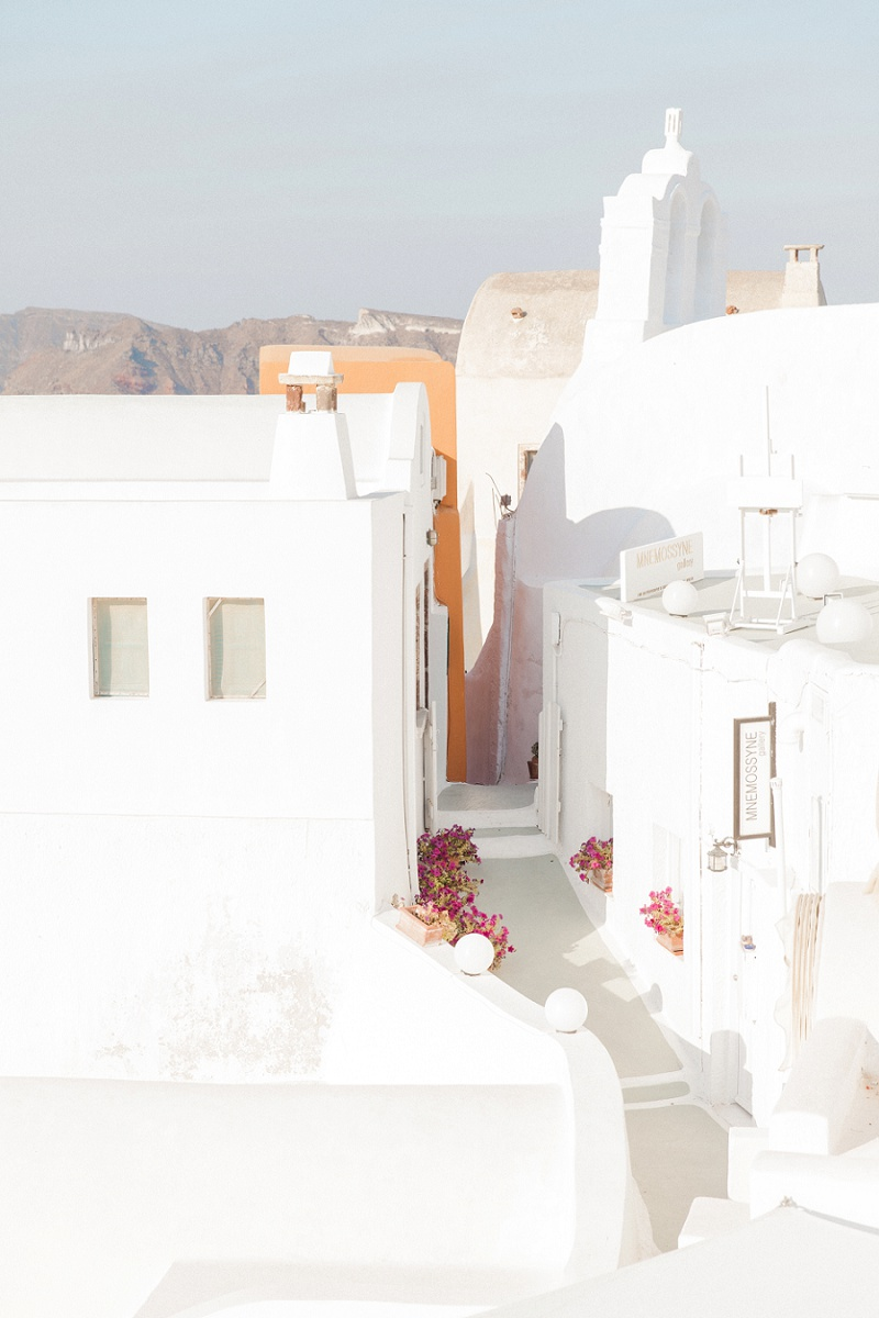 White Houses of Oia Santorini with Pink Flower Pots