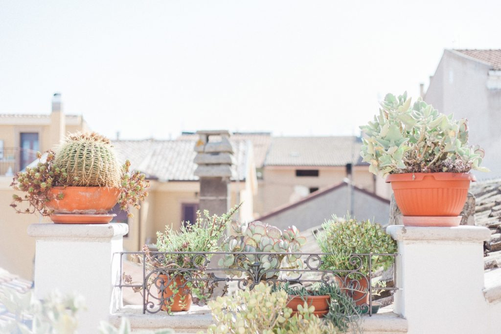 Balcony with herb and cacti potplants in a traditional Italian home