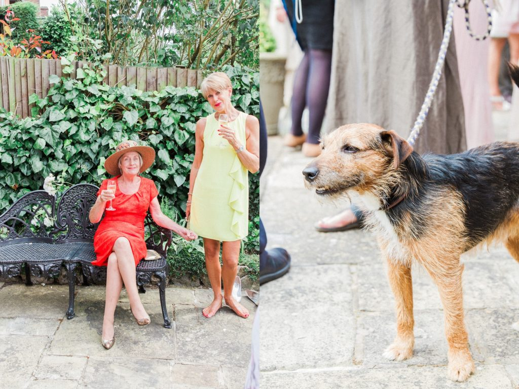 Wedding guests and a dog relax in the garden