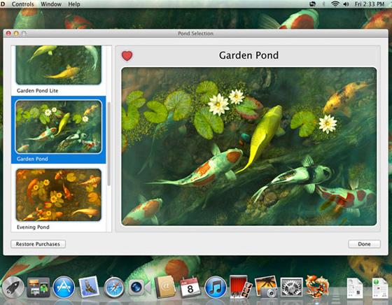 Koi-Pond-3D-Mac-OSX-Aquarium-Poissons-Wallpaper-2
