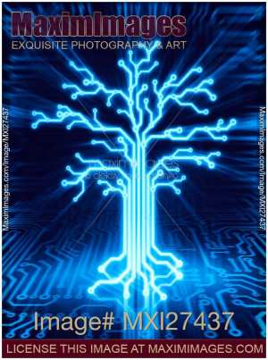 Stock illustration: Glowing digital tree circuits conceptual illustration | MaximImages | Image
