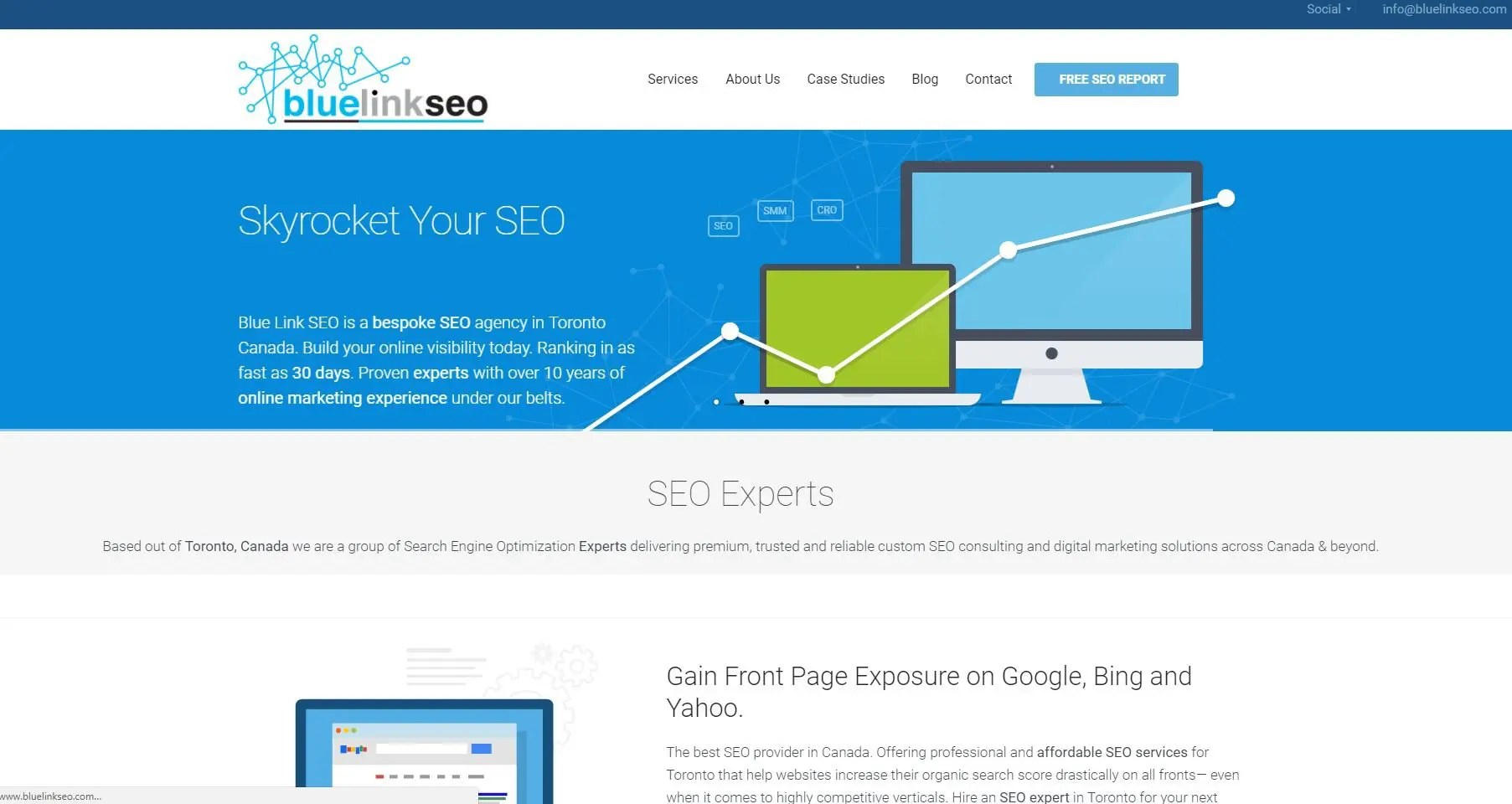 Blue Link SEO website