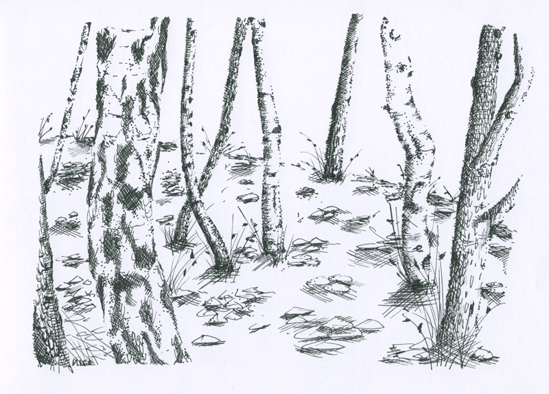 TEXTURE_HATCH_TREES