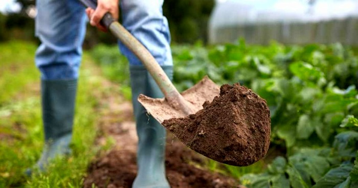 Aspek Penting dalam Manajemen Agribisnis