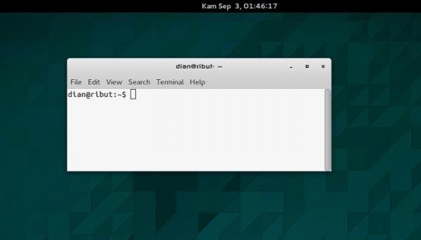 terminal_flash1