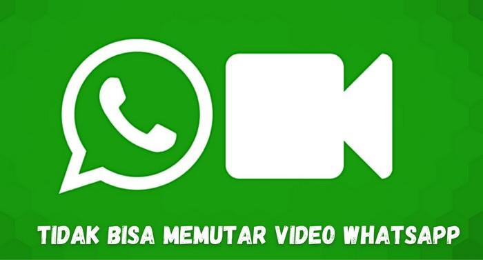 Tidak bisa memutar video whatsapp