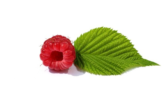 Raspberries, Leaf, Green, Berry