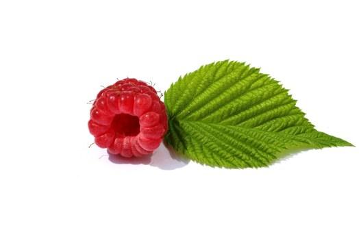 Raspberries, Leaf, Green, Berry