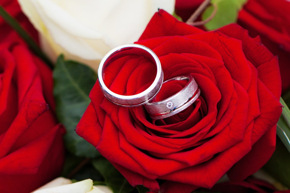 Free photo Rose Romantic Flowers Red Wedding Together Love   Max Pixel Rose  Wedding  Together  Love  Flowers  Romantic  Red