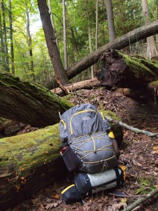 Highlight image of The Vargo Ti-Arc Backpack in wooded area