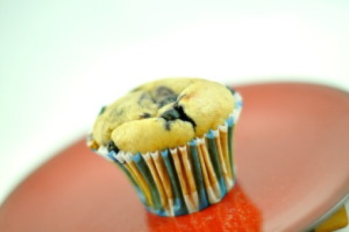 low carb muffin 1