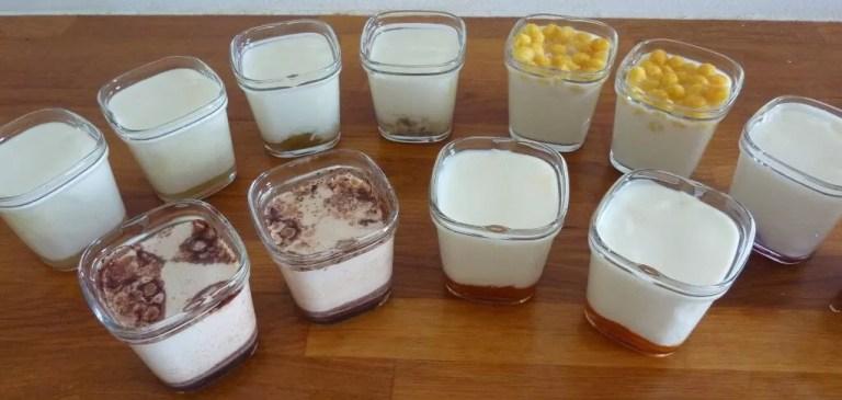yaourts maisons