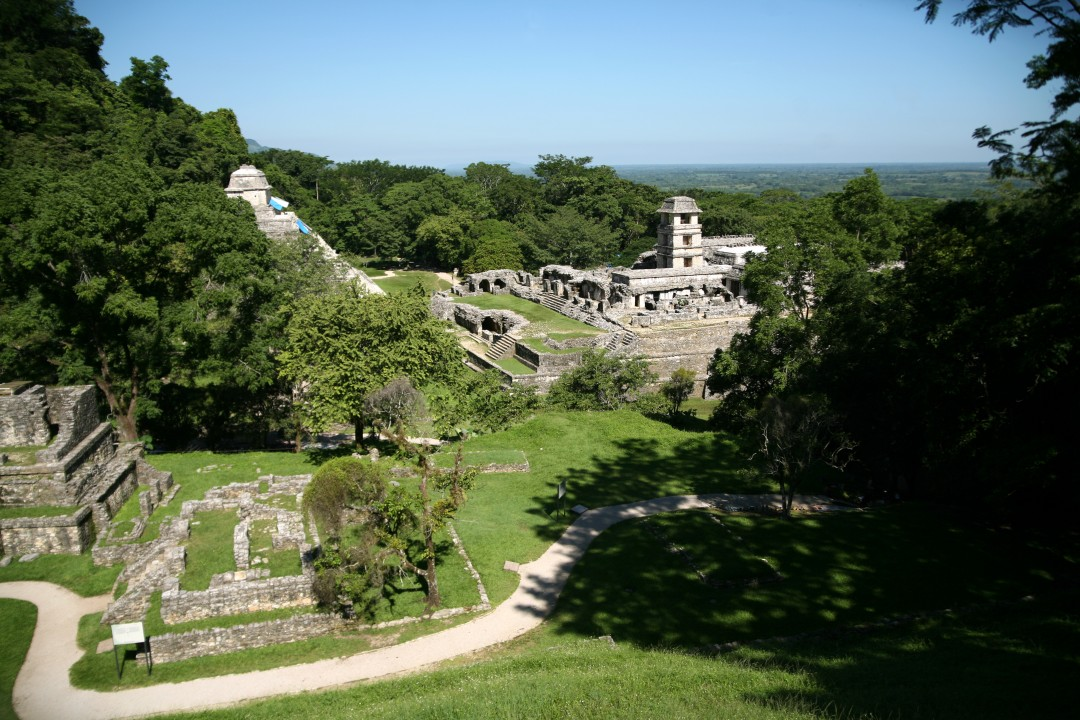 Vue sur le palais depuis le groupe de la Croix à Palenque © M.C.