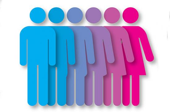 Measuring gender representation in the political process ...