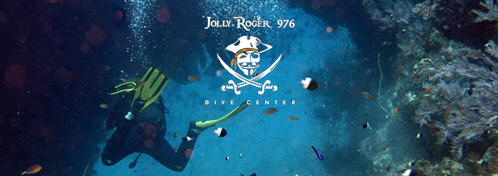 Jolly Roger 976 Dive Center - Tourisme Mayotte