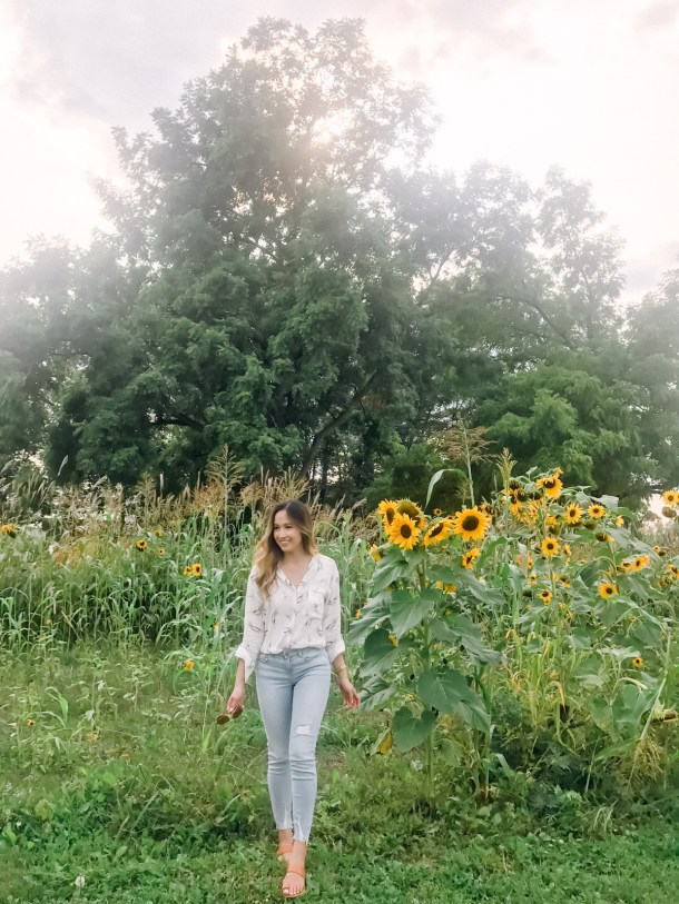 Sunflowers as tall as me!