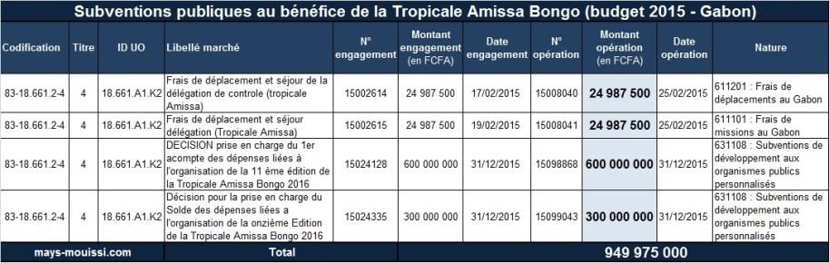 Subventions publiques au bénéfice de la Tropicale Amissa Bongo