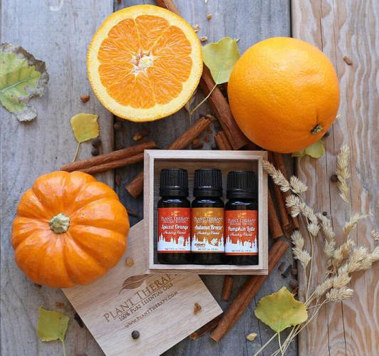 Plant Therapy Fall Essential Oil Blends