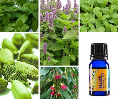 Priime Escape essential oil blend
