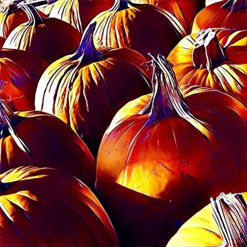Prisma filter, pumpkins in autumn, Hamilton Ontario Canada