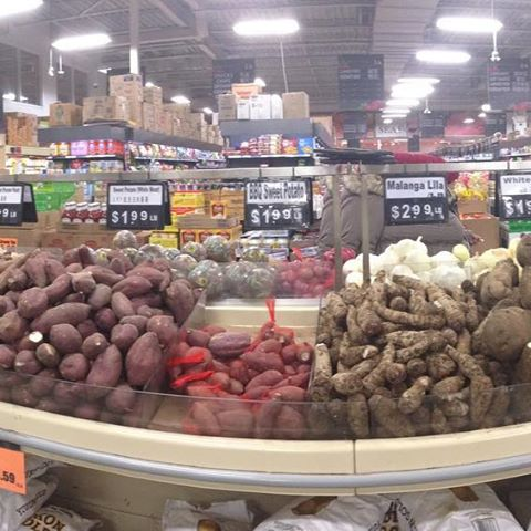 I live in a very immigrant-heavy part of immigrant-heavy Toronto, which yields some really fun results, especially as far as food goes. Here is the yam aisle in a local supermarket. Note that another few feet at either side has been cropped by Instagram. (Or as I will call it for this pic, instayam.) #yammy #yamaha #yams #yam #yamaguchi #yamyamyam #scarborough #toronto #torontolife #supermarket #aisleperfect #panorama #pano #panoramic #sweetpotato #ethnic data-recalc-dims=