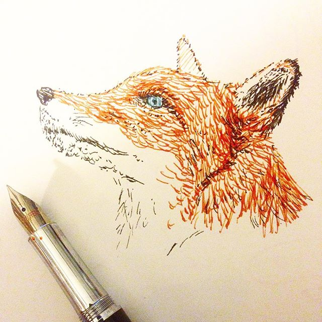 Finally tried sketching with my pens. This cross hatching and stippling thing is quite calming. For #mondaymatchup I used a sheaffer intensity with Noodlers operation overlord orange. #mondaymatchupgiveaway #ink #inkdrawing #inked #inkedup #fox #sketchbook #sketch #sketches #sketchaday #sketching #pen #penandink #instagram #instagramers #instagramhub #instagood #artist #torontoartist #orange #fountainpen #noodlersink #linedrawing
