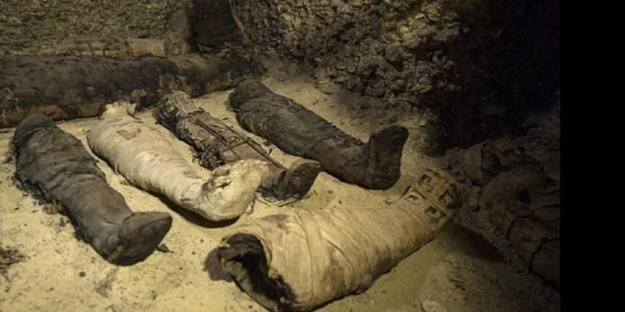 Egypt Unveils 40 Ancient Greek Mummies