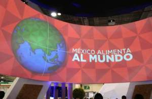 Mexioc Food Show 2017