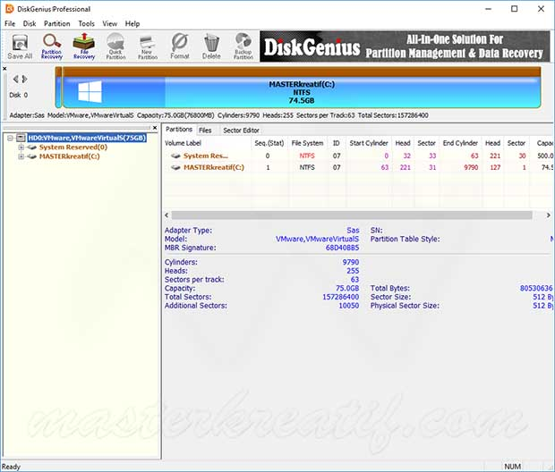 DiskGenius Professional Licence key Full Version
