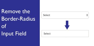 Remove the Border-Radius of Input Field