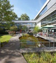 Frankfurt of Finance & Management