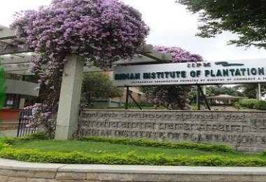Indian Institute of Plantation Management