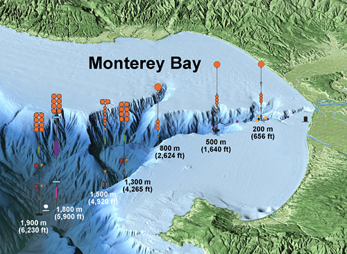 Geological Changes Group Mbari