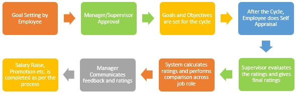 Performance Appraisal Process