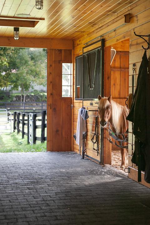 Back Country Barn-3