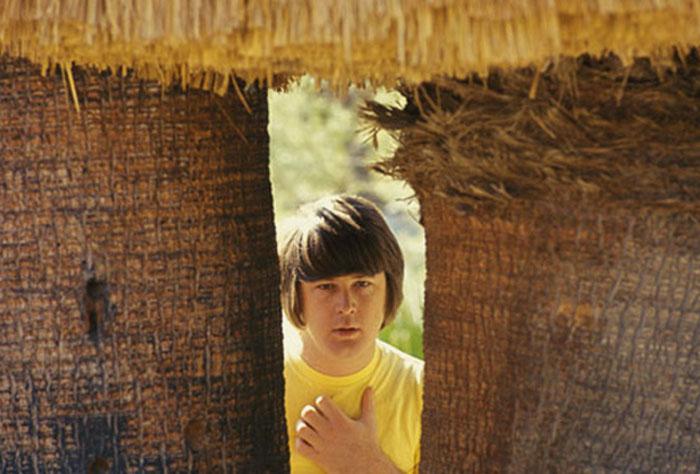 BrianWilson1967
