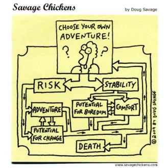 chickenriskstability