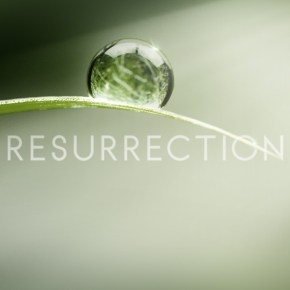 """Hey, We See Dead People:"" Will Willimon on Easter and ABC's Resurrection"