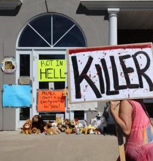 cecil-lion-protest
