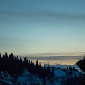 The Cursed Tree and the High Priest: The Christ Imagery of <i>The Revenant</i>