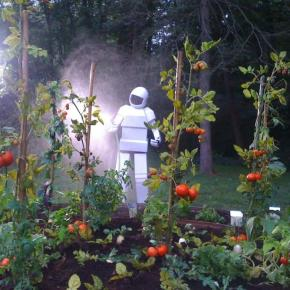 Death of a Garden That Never Existed. And Robots.