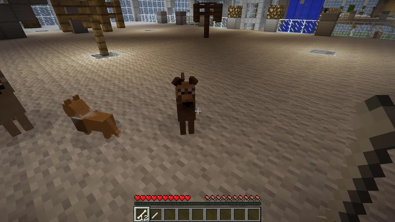 Doggy Style Mod 11221112 For Minecraft