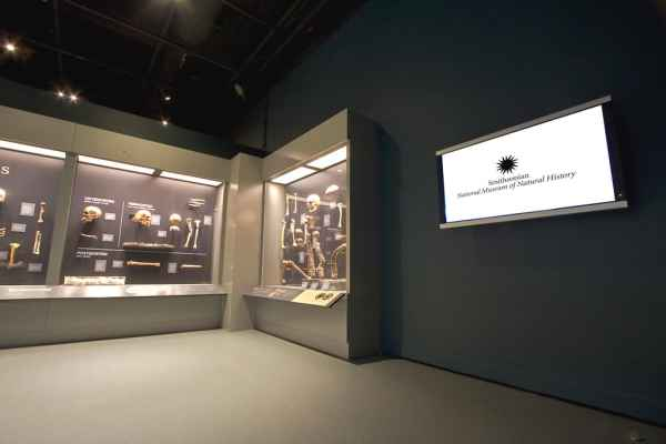 McCann Systems | Smithsonian National Museum of Natural ...