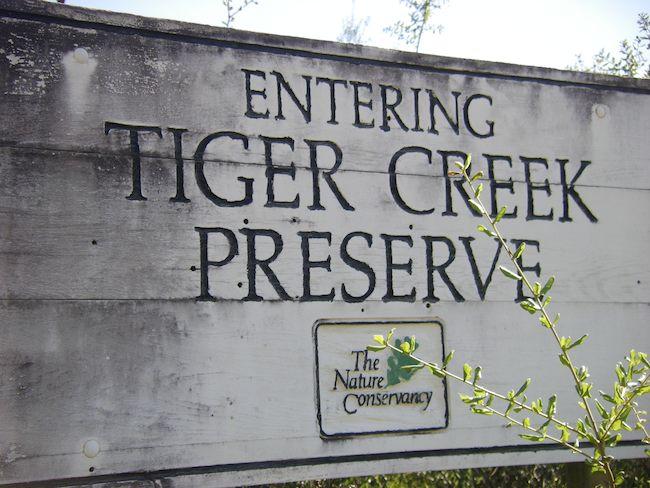 sign at Tiger Creek Preserve, Florida